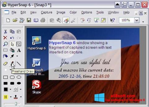 Screenshot HyperSnap Windows 8