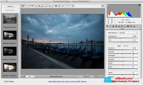 Screenshot Adobe Camera Raw Windows 8