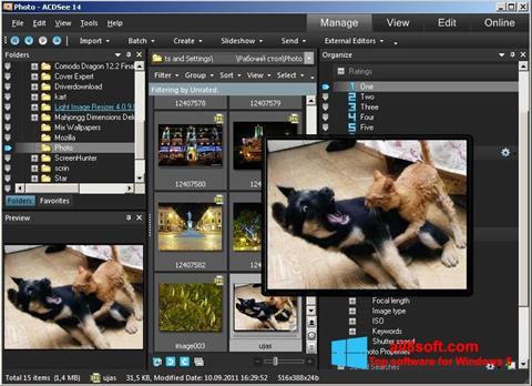 Screenshot ACDSee Photo Manager Windows 8