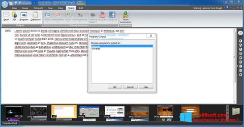 Screenshot Snagit Windows 8