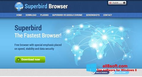 Screenshot Superbird Windows 8