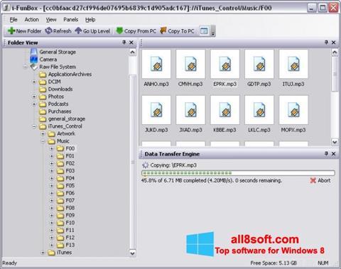 Screenshot iFunBox Windows 8