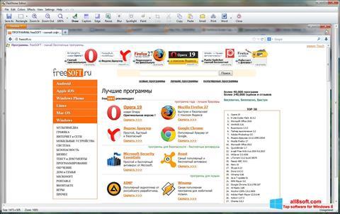 Screenshot FastStone Capture Windows 8
