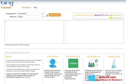 Screenshot Bing Translator Windows 8