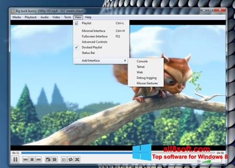 Screenshot VLC Media Player Windows 8